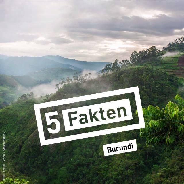 Engagierte und Entrepreneurs aus Burundi bereichern jedes Jahr die FAIR HANDELN. Dieses Jahr geben wir gemeinsam etwas zurück! Macht mit bei unserem #Gewinnspiel und spendet für das Zachäus-Haus in Gitega, Burundi.  Das Zachäus-Haus ? ist für ?...