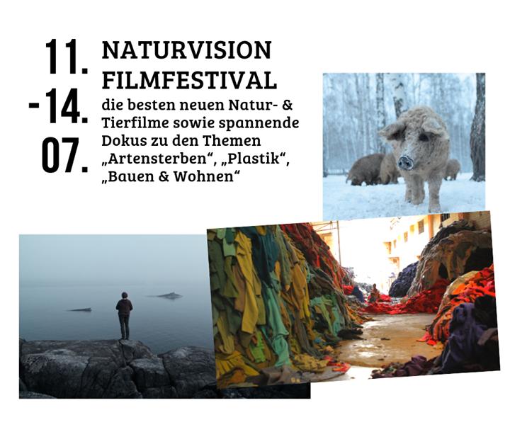 NaturVision ist ein einzigartiges Filmfestival für Natur, Wildlife und Umwelt in Ludwigsburg. ?? Seid dabei und besucht das Freilichtkino mit Zukunftsmarkt und buntem Kinderprogramm, Stände mit nachhaltigen Produkten, spannende Expertengespräc...