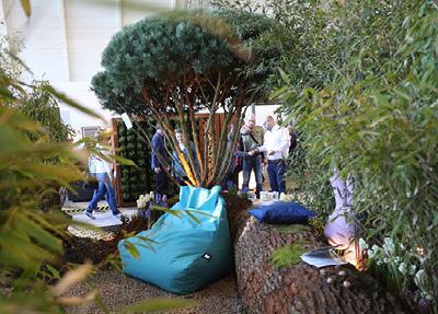 Awe Inspiring Garten Ruckblick 2019 Messe Stuttgart Short Links Chair Design For Home Short Linksinfo