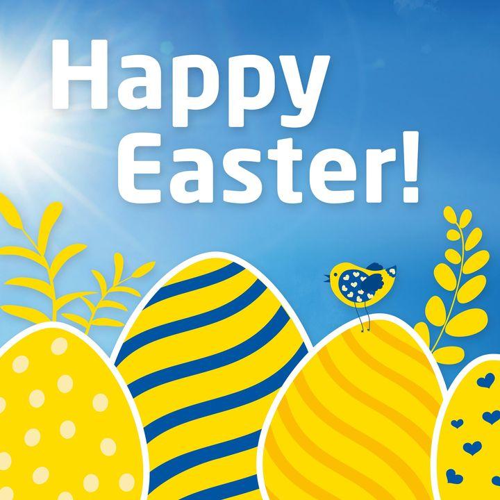Wir wünschen Euch frohe & schöne Ostern und weiterhin gutes Durchhalten für die kommende Zeit! Wir hoffen, Ihr seid gesund und könnt bald wieder Euren gewohnten Tätigkeiten nachgehen! Bis bald! Euer R+T Team #rtexpo #happyeaster #stayhealthy